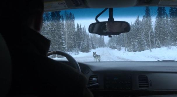 Fargo recap10 17