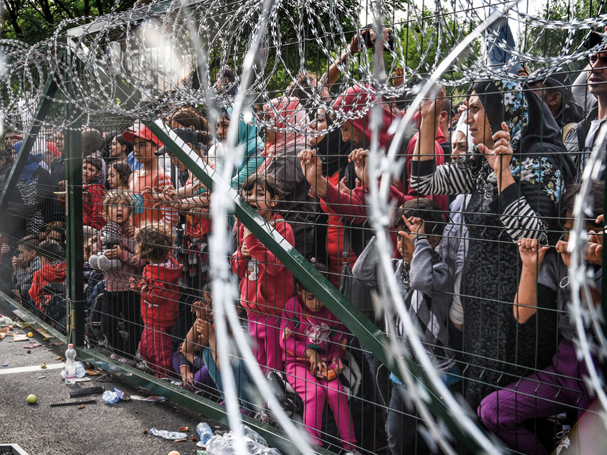 βιμ βέντερς προσφυγικό 607
