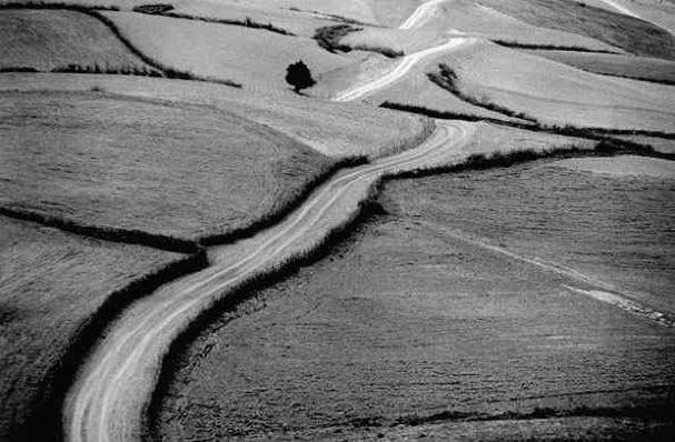 Abbas Kiarostami Photography 607
