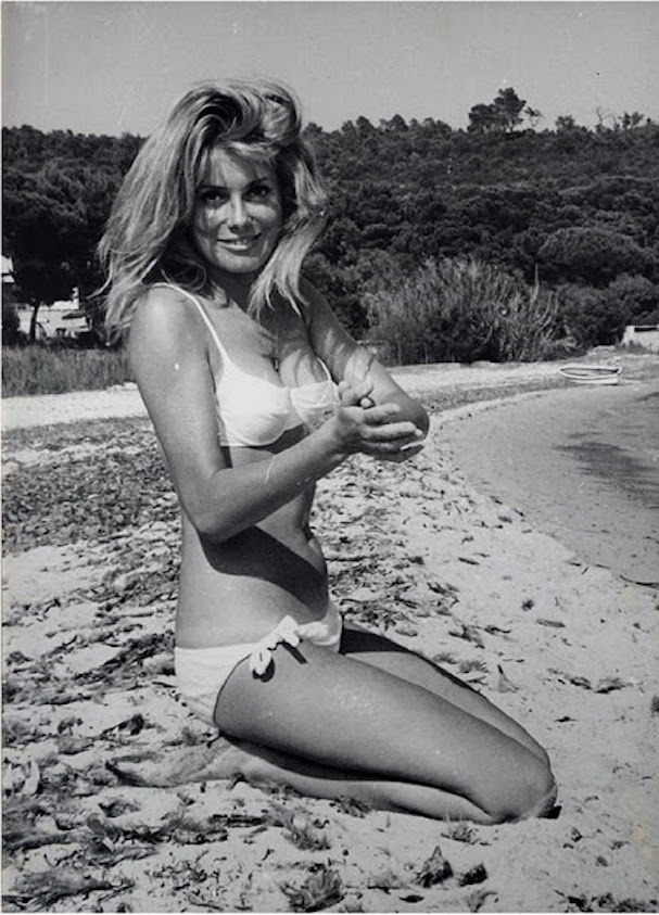 Catherine Deneuve Summer