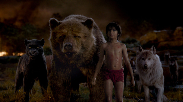 the jungle book 607