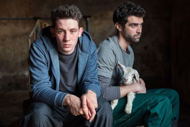 God's Own Country 607