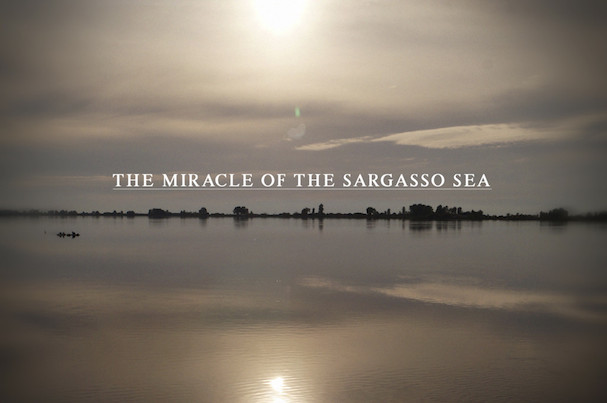 The Miracle of the Sargasso Sea 607
