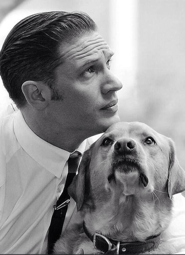 Tom Hardy Dog