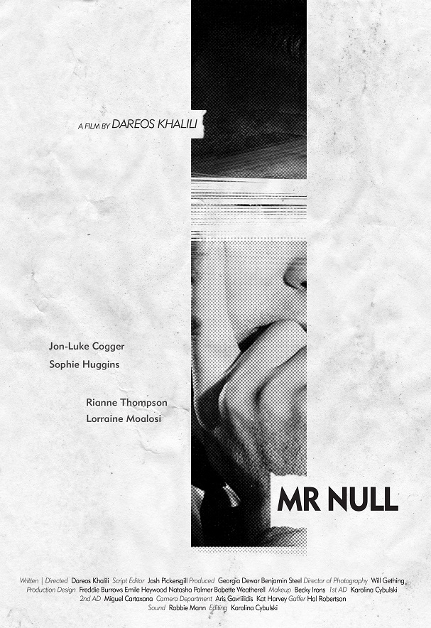 mr. null poster