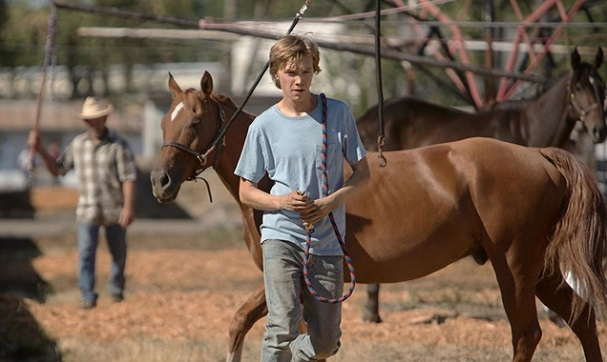 Lean on Pete 607
