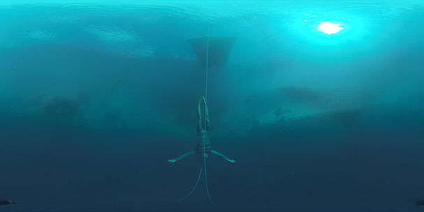 Dolphin Man VR 607