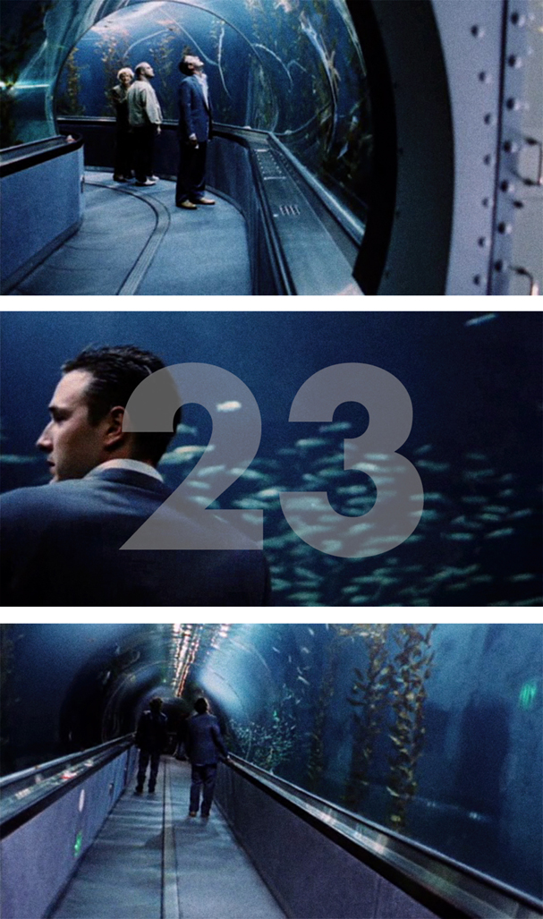advent calendar 23 2017 dream with the fishes