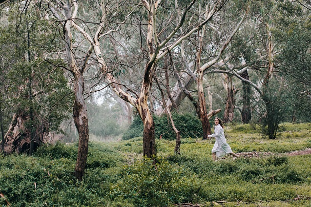 Picnic at Hanging Rock 607