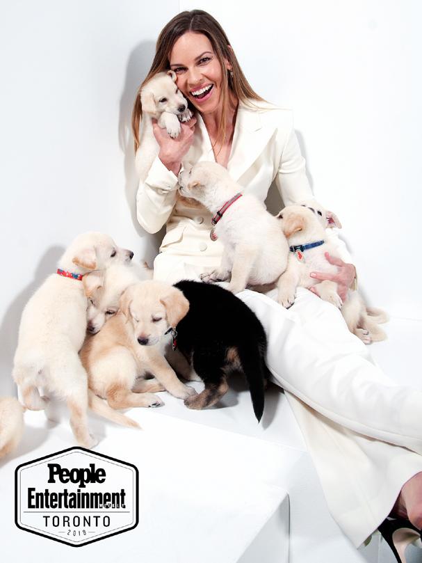 τορόντο toronto puppies 607