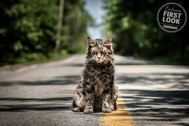 pet cematary 607