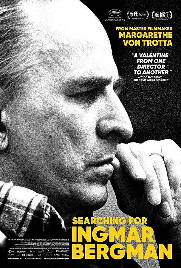 Searching for Ingmar Bergman 607