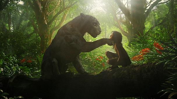 mowgli 607