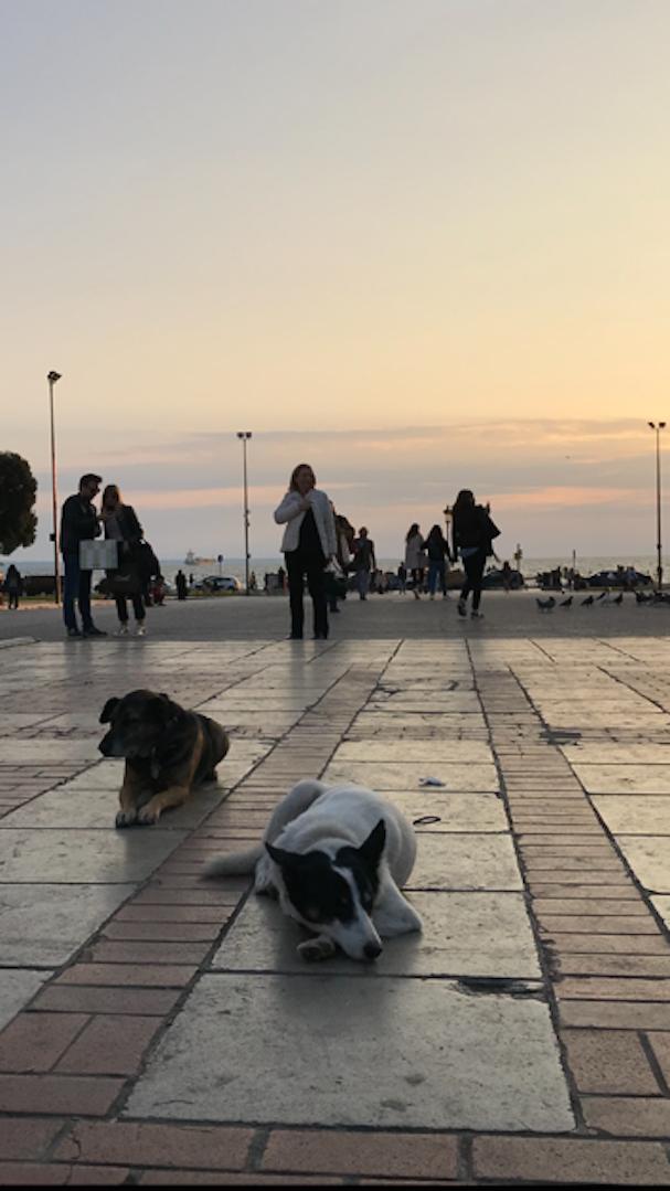 Θεσσαλονίκη 2018