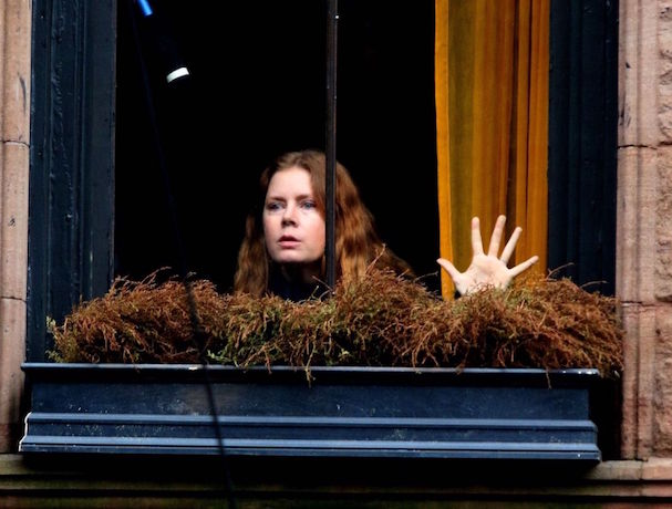 the woman in the window 607