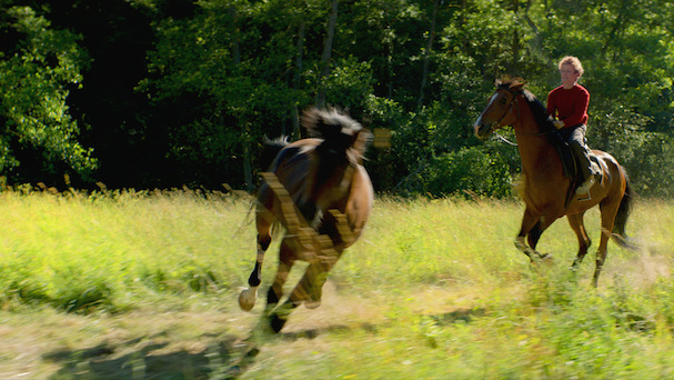Out Stealing Horses 607