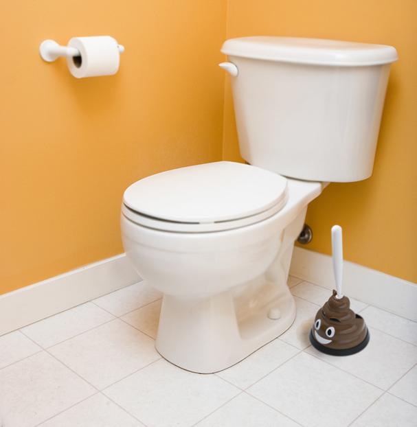mr poop 607