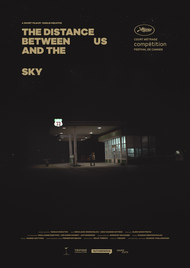 The Distance Between Us and the Sky Poster