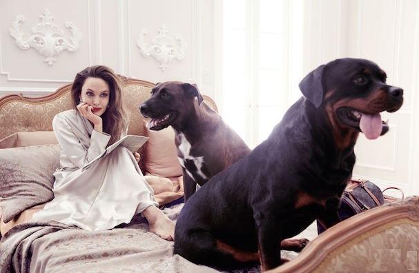 Angelina Jolie Elle 607 3