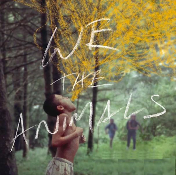 We the Animals 607