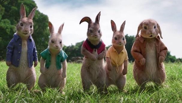 peter rabbit 607